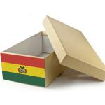 Przesyłki zagraniczne – paczka do Boliwii