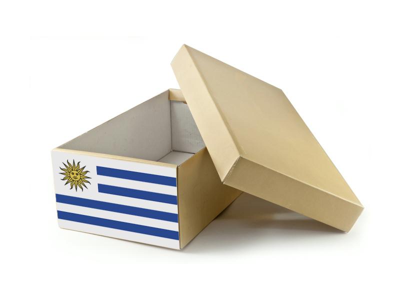Paczka do Urugwaju